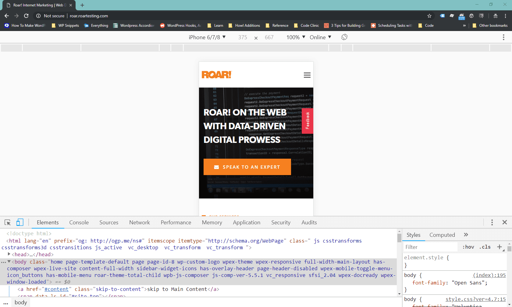 a google inspect tool shot of the ROAR! website